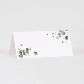 marque-place-mariage-fleurs-eucalyptus-TA0122-1900009-09-1
