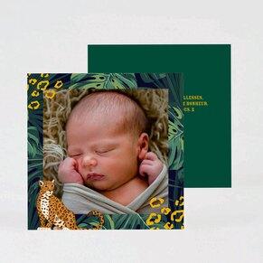 carte-de-remerciement-naissance-guepard-et-foret-tropicale-TA0517-2000001-09-1