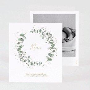 carte-de-remerciement-naissance-eucalyptus-et-dorure-TA0517-2000006-09-1