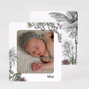 carte-de-remerciement-jungle-vintage-TA0517-2000023-09-1