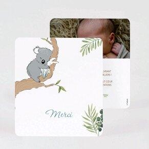 carte-de-remerciement-naissance-famille-koalas-TA0517-2000026-09-1