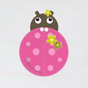 faire-part-naissance-petite-coccinelle-TA05500-1800012-09-1