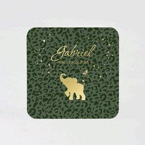 faire-part-naissance-elephanteau-TA05500-2000023-09-1