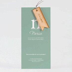 faire-part-naissance-minimaliste-et-mini-fanion-en-bois-TA05500-2000031-09-1