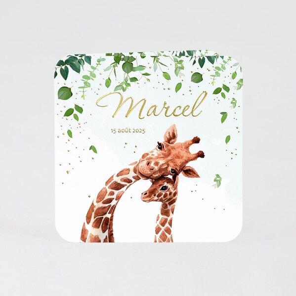 faire-part-naissance-girafes-sous-les-arbres-TA05500-2000042-09-1