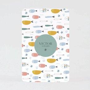 faire-part-naissance-famille-de-poisson-coins-arrondis-TA05500-2000103-09-1
