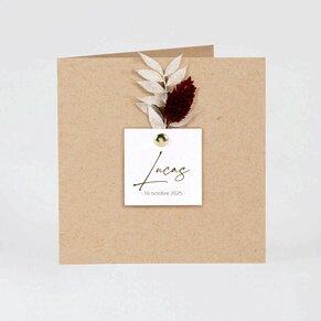 faire-part-naissance-nature-poetique-TA05500-2100007-09-1