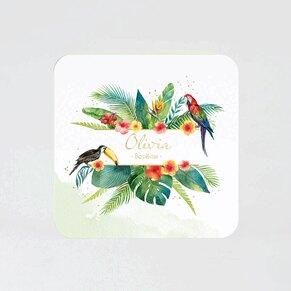 faire-part-bapteme-perroquets-des-iles-TA0557-2000014-09-1