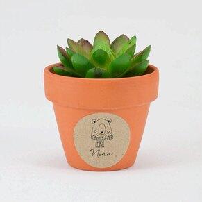 sticker-autocollant-pot-en-terre-ourson-rigolo-TA05905-2000117-09-1