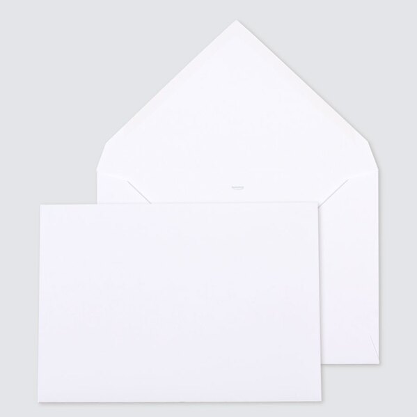 grande-enveloppe-blanche-22-9-x-16-2-cm-TA09-09115213-09-1