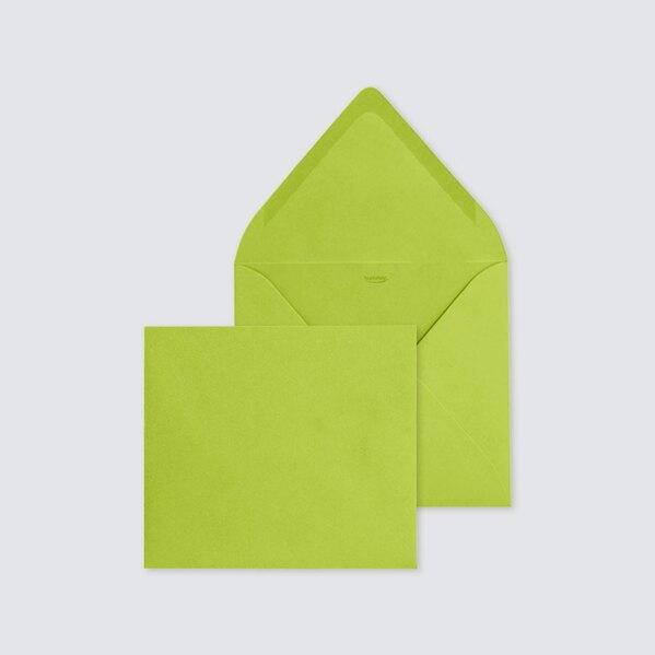 enveloppe-verte-tendance-14-x-12-5-cm-TA09-09904613-09-1