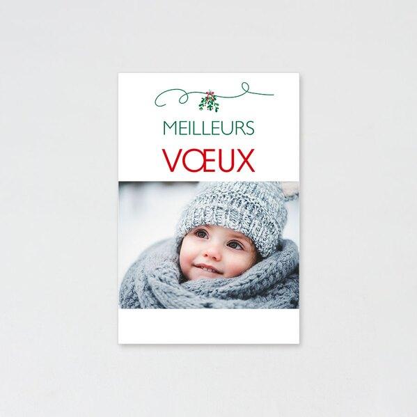 carte-de-noel-houx-d-hiver-TA1188-1900012-09-1