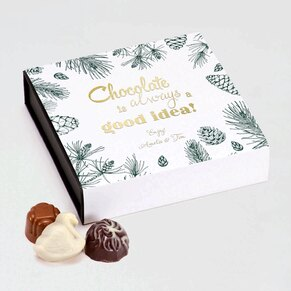 coffret-chocolat-belge-16-pralines-pommes-de-pin-TA11976-2000004-09-1