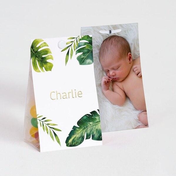 contenant-a-dragees-bapteme-feuilles-tropicales-et-prenom-dore-avec-photo-TA1575-2000013-09-1