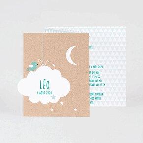 faire-part-naissance-vert-douce-nuit-buromac-586074-TA586-074-09-1