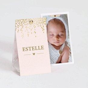etui-a-dragees-naissance-rose-et-laurier-dore-buromac-749001-TA749-001-09-1